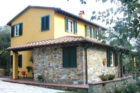 Per  chi  ama    la  tranquillità - Lucca