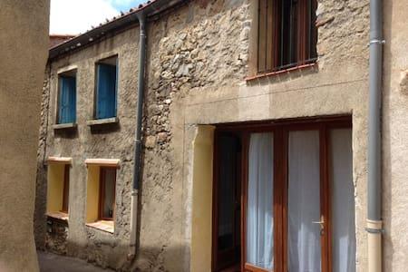 Maison 80 m2 dans site exceptionnel - Trévillach - Casa