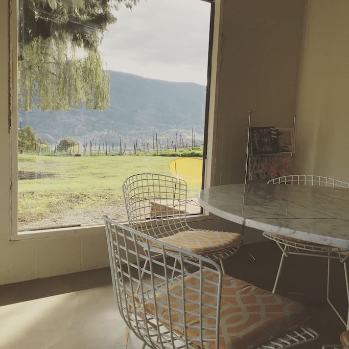 The view of the vineyard and Skaha lake from the dining room, with Saaranen tulip table and Bertoia chairs