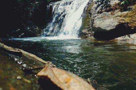 Inca Touring un recorrido hacia la naturaleza - Ibarra
