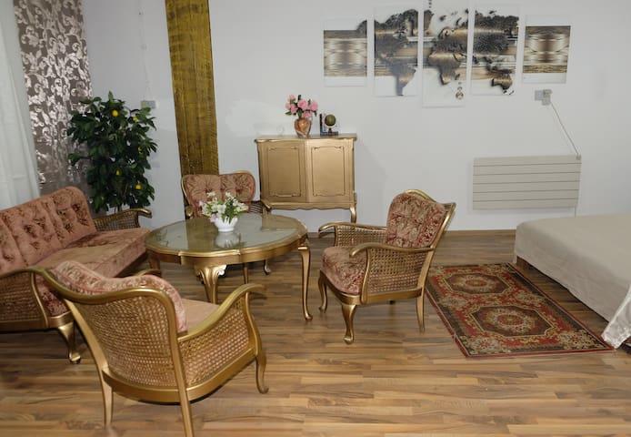 Außergewöhnliche Wohnung in Innenstadt Dillingen - Dillingen/Saar - Apartamento