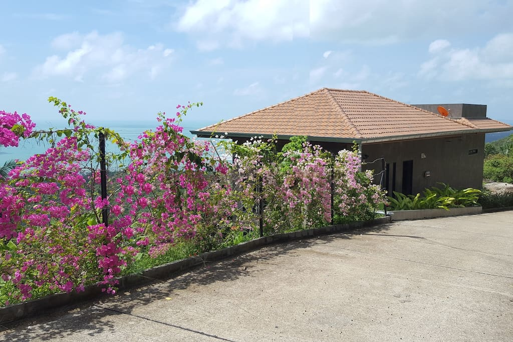 View from the street with blossoming Bougainvillea Garden. The distance to the closest Beach is only about 800 m.