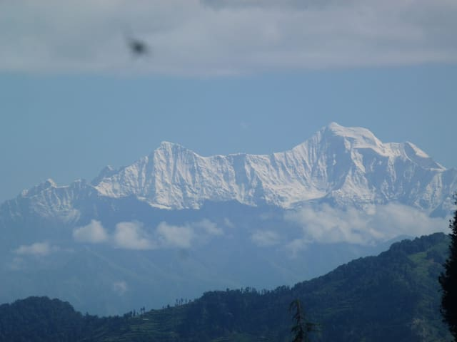 view from the grounds of the himalayas