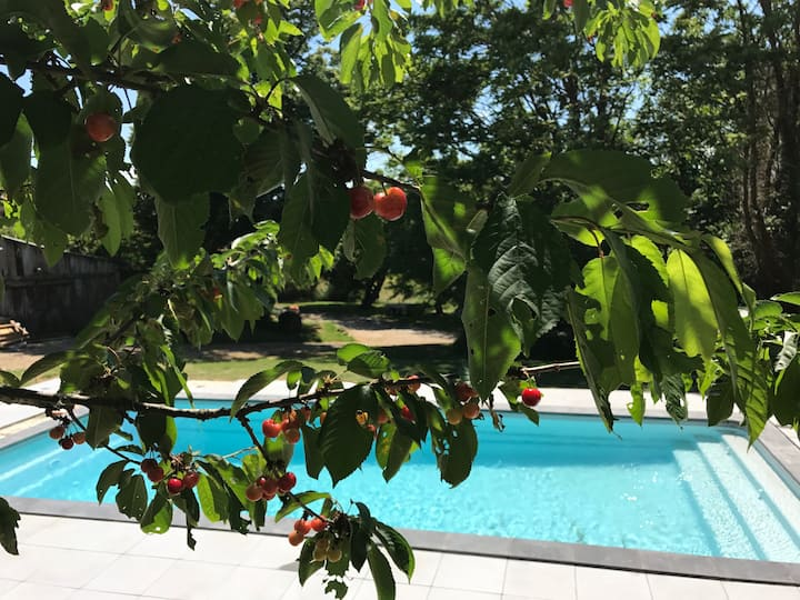 Charming 2 bedroom gite with private pool
