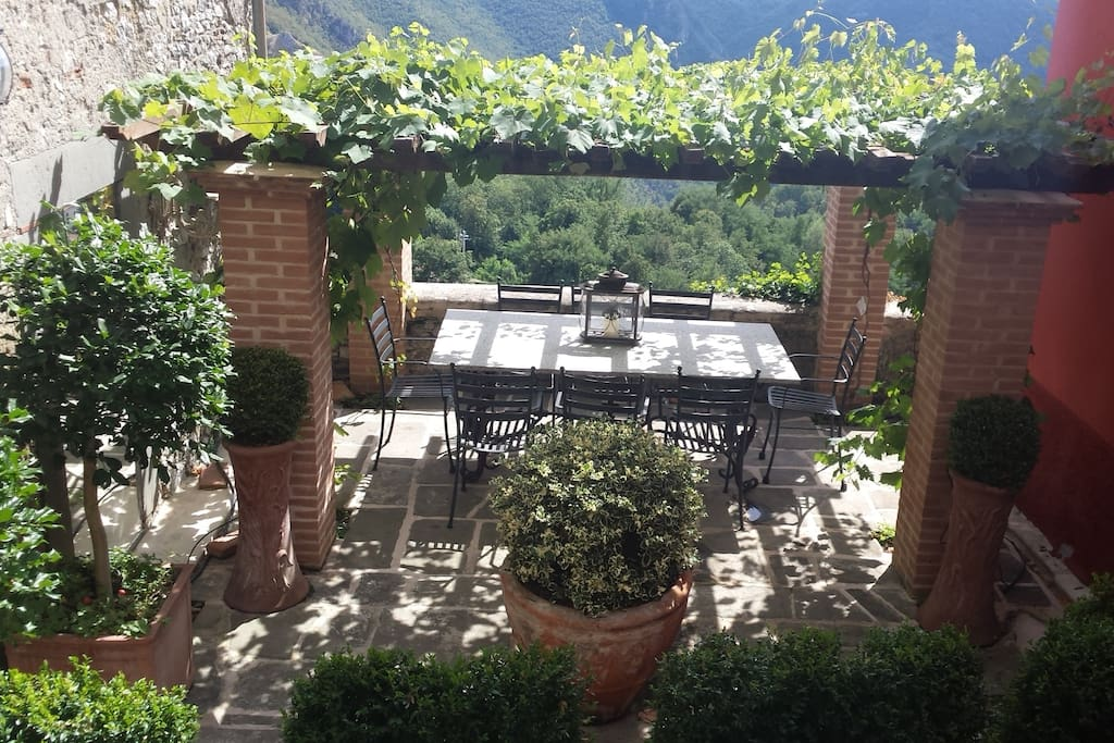 Garden courtyard dining