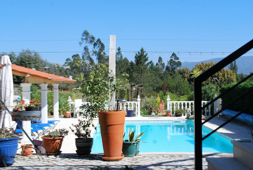 Pool area equipped with sun loungers and shaded areas if needed . Leading in to the gravel garden ,a very peaceful and relaxing area.