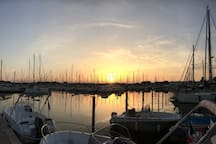 Port de plaisance de Port-Camargue (Juillet 2017)
