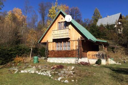 Hut at the foot of High Tatras - Stará Lesná - Chalet - 2