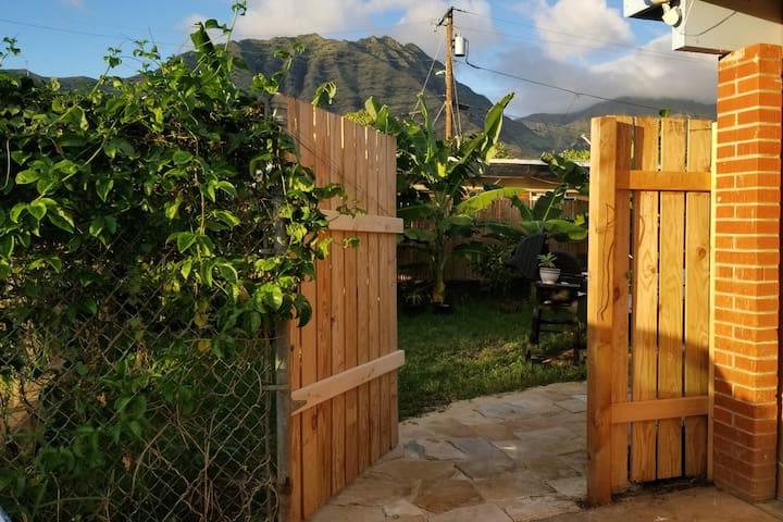 Hawaiian Hillside (Hibiscus)