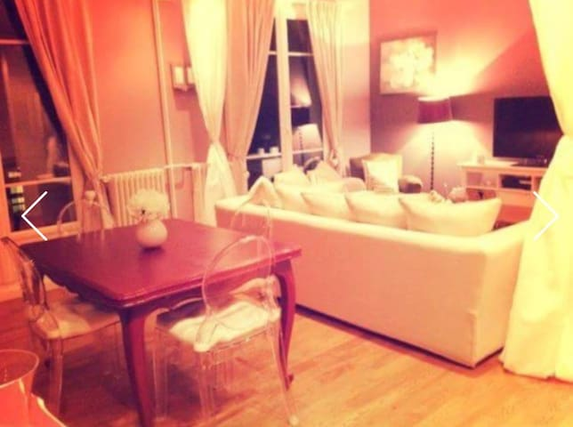 Appartement spacieux et confortable - Montmorency