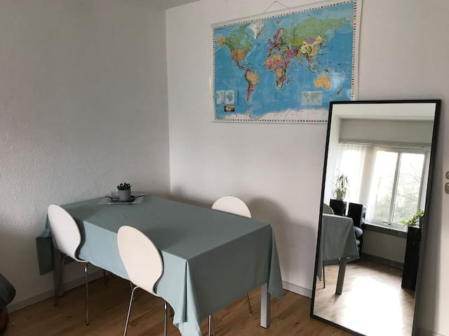 Small apartment close to SDU