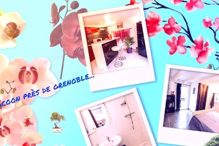 wonderful stay in Grenoble ...... - Haus