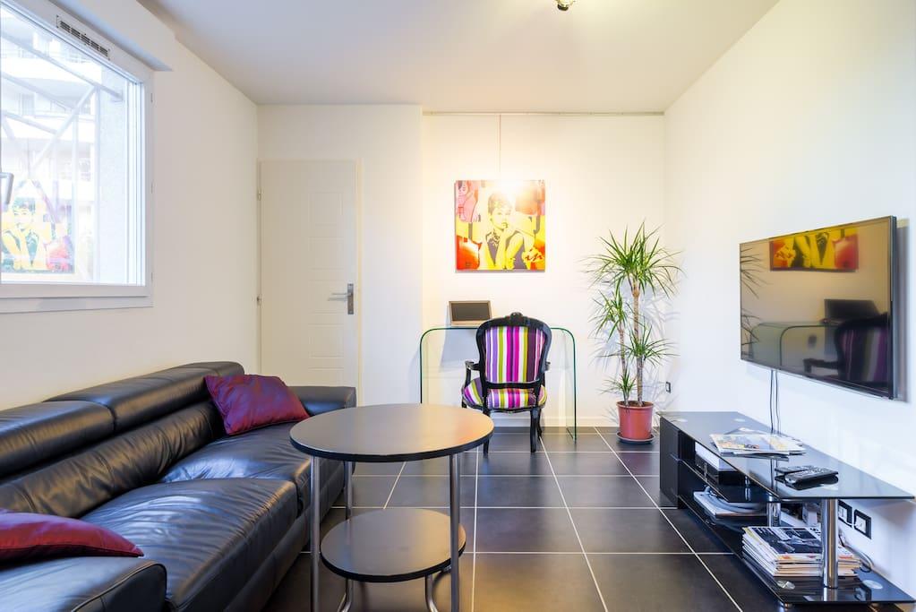 Salon / Living room (2)