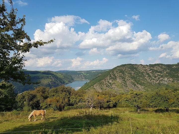 Rhine Pearl Hideaways - Erstes Geschoss