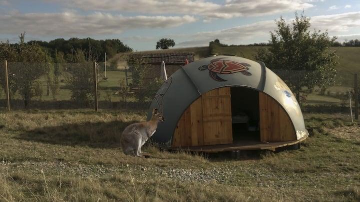 Une nuit chez les Kangourous, ( Repas compris )