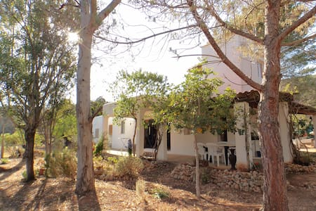 ROOF TOP ROOM,TOTALLY INDEPENDENT WITH BIG TERRACE - san carlos de peralta