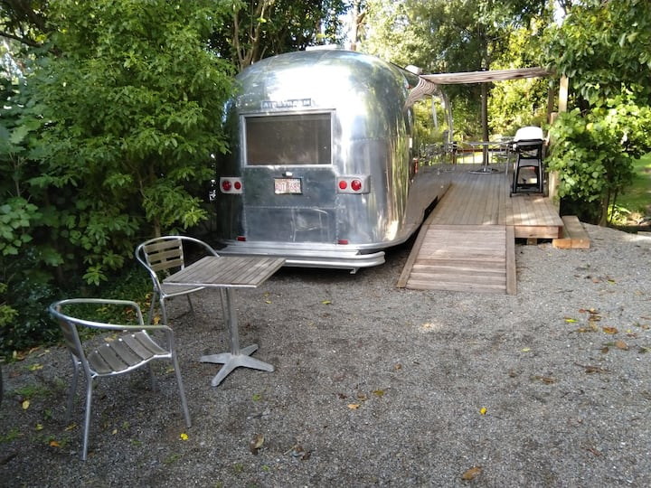 Airstream Caravan Set Amongst The Trees