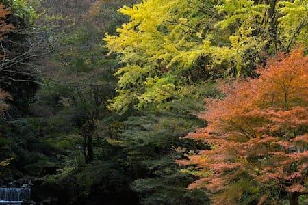 Beautiful nature heals your mind and body!Pets OK! - Yugawara-machi