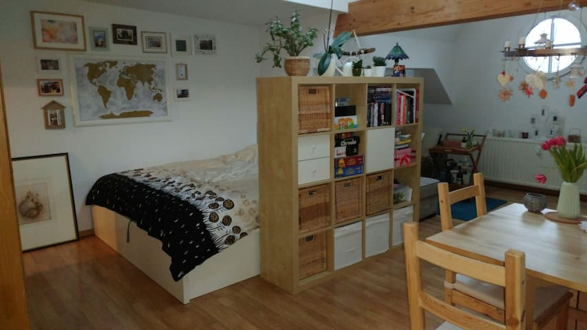 Gemütlicges 1 Zimmer-Appartement mitten im Zentrum - Jena - Leilighet