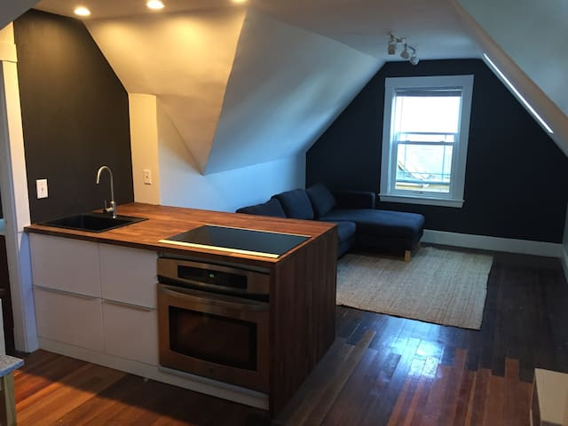 Charming one bedroom by Red Line - Boston