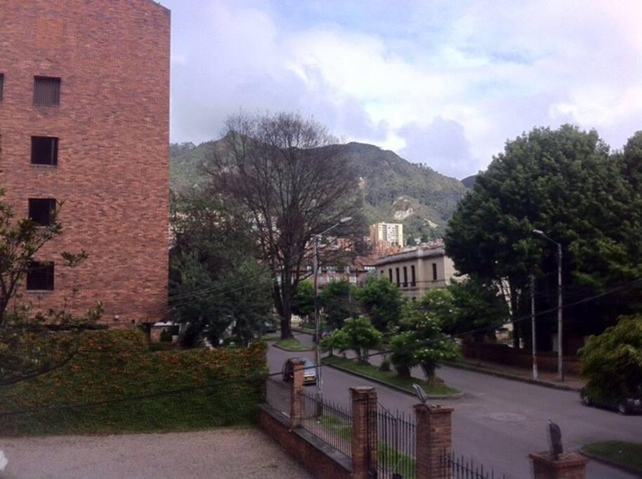 Quinta Camacho neighborhood - vista desde el apto