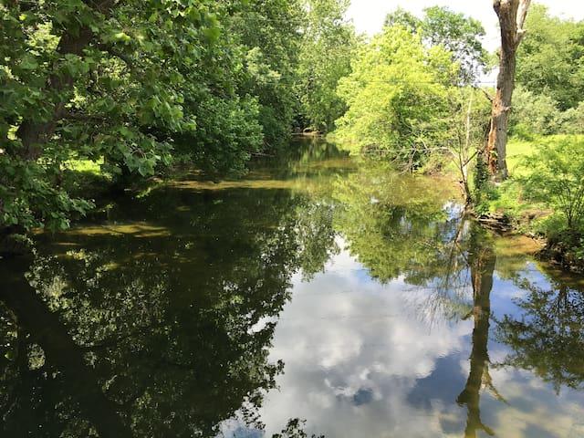 Creek (as you cross the bridge to the property)