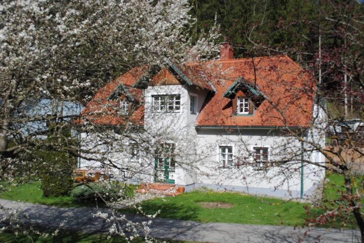 Apartment im Drahtzughaus, Dachgeschoss