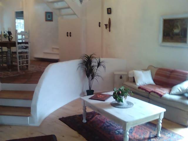 Spacious apartment close to the sea
