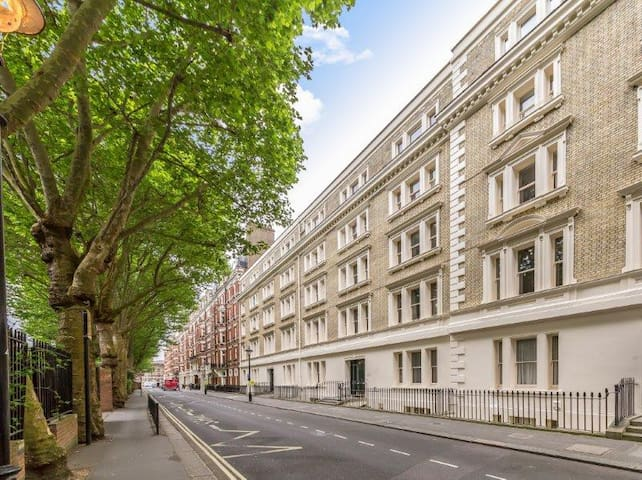 Large en-suite room in the heart of Westminster