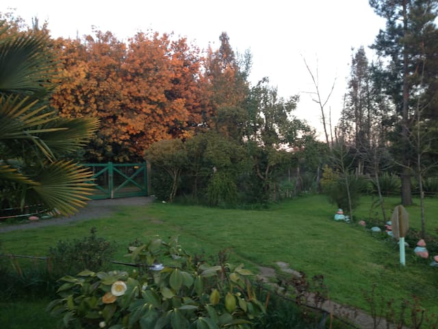 CABAÑA FAMILIAR  TERMAS DE CHILLAN - Chillan - Allotjament sostenible a la natura