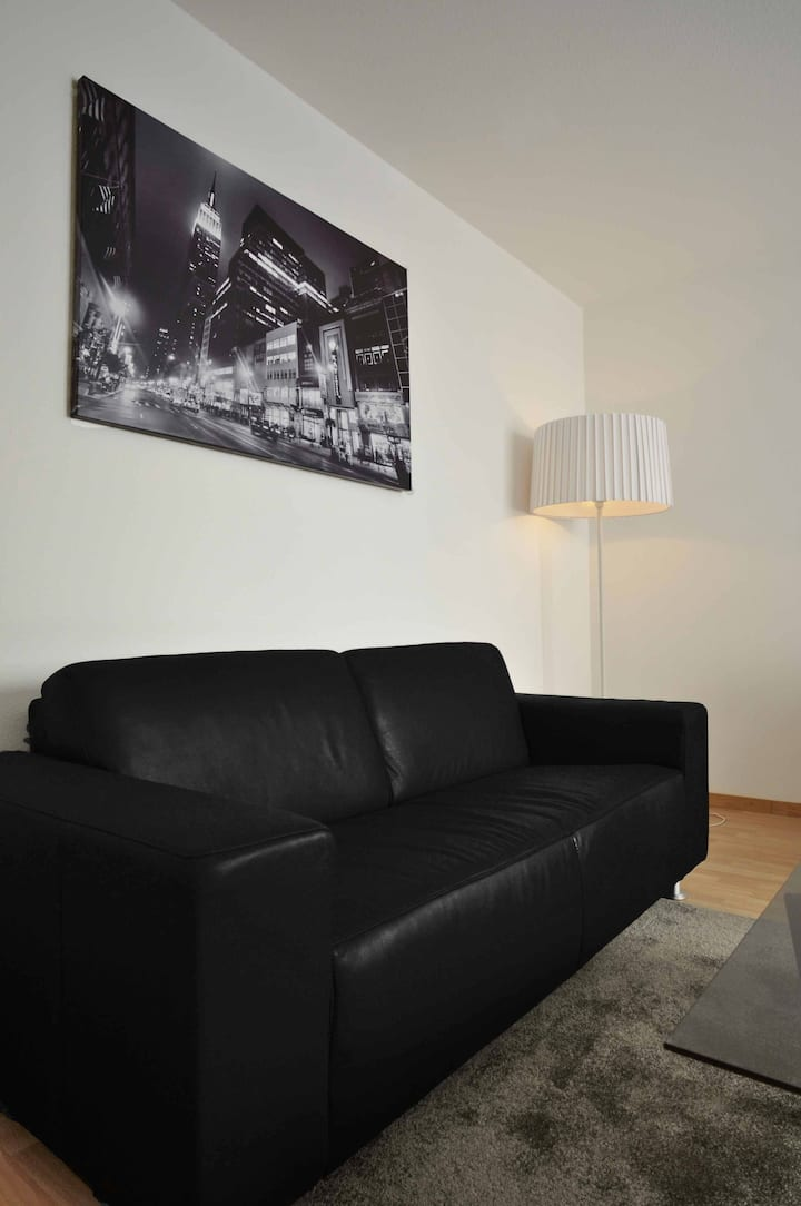 Appartement 2 pièces Valentin Lausanne