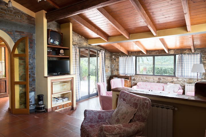 Apt. BRUNELLESCHI in Villa Cafaggiolo: big and bright living room