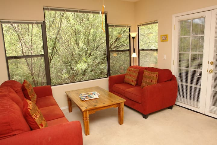 1 bedroom with den condo -CV15202 - Tucson - Apartemen