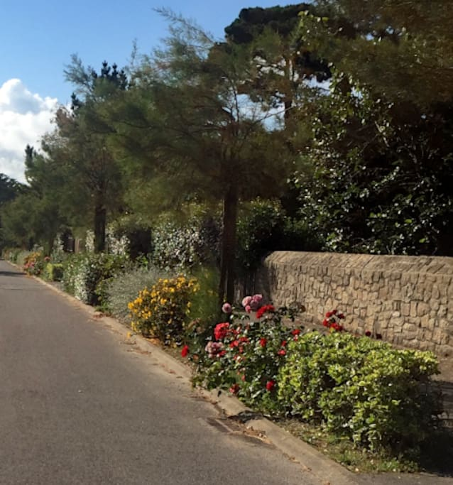 One of Piriac's loveliest streets