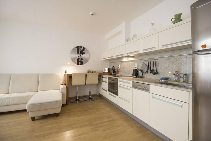 Luxurious Apartment near Prague Castle