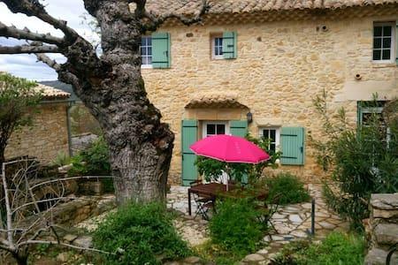 Mas en pierre Spa-Barbecue-Coeur de village calme - Vénéjan - 独立屋