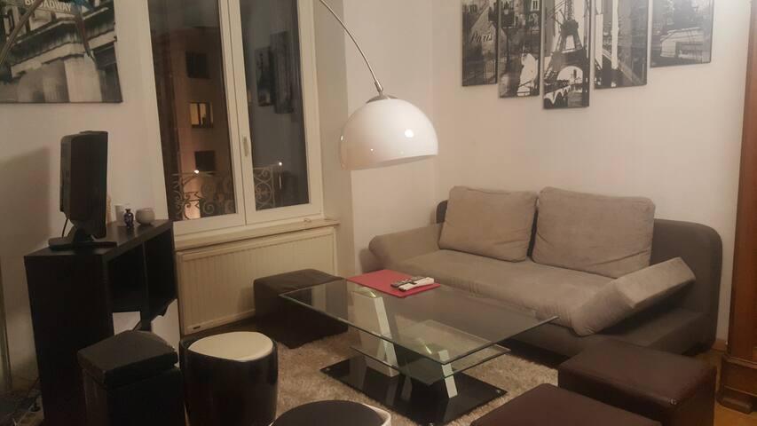 Appartement dans l'hypercentre Strasbourg - สตราสบูร์ก - อพาร์ทเมนท์
