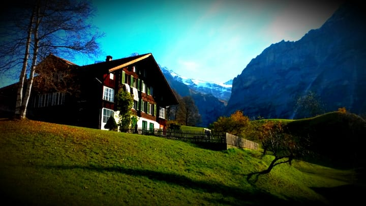 Chalet Abegglen 1 Bed Apartment