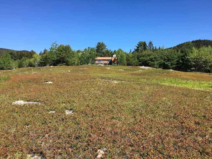 Blueberry Field Cabin