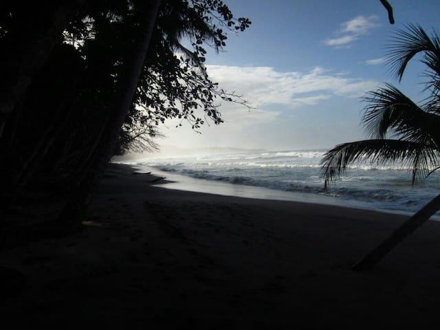Casa Jungla _ Your Home Near Manzanillo Beach