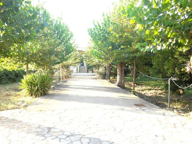 Ktima kavourou, Dionisis' house - Agia marina   - House