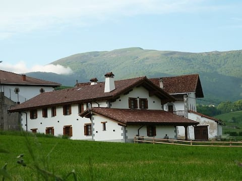 Apainduri - Rural House in the heart of the Pyrenees - Navarre