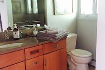 Upper Level Hall Bathroom