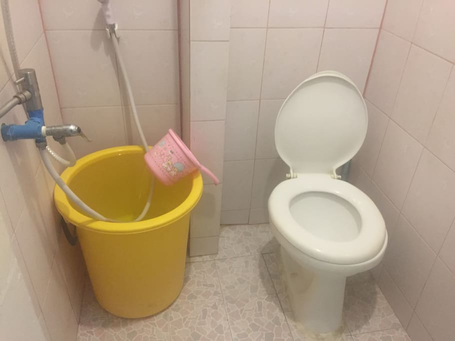 For toilet it not automatic flashing , it manual .(Use pink bowl)