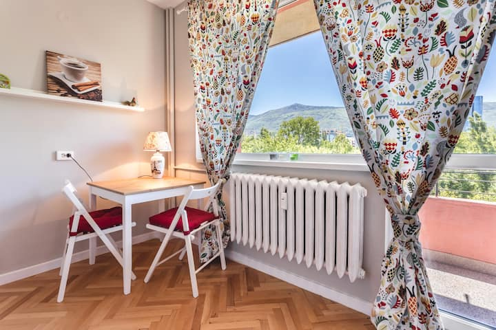 Bright Studio with Character, near city center