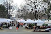 Saturday Farmer's Market across the street