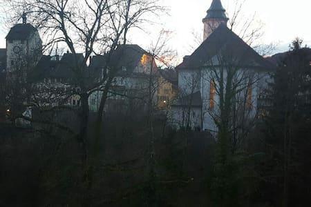 Traumhafte Ferienwohnung in Waldhut - Waldshut-Tiengen - อพาร์ทเมนท์