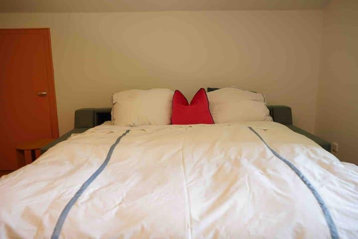 Queen size Custom made in Germany , BW sofa bed. Deutsche Schlafsofa von BW.