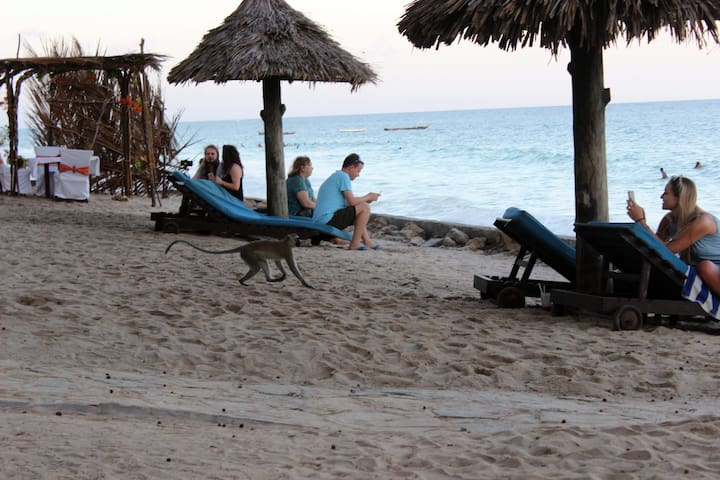 All inclusive Diani Beach Holiday.(Family of 4/5.)
