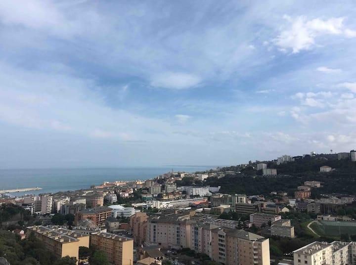 Beau T2 terrasse vue mer et montagne proche centre